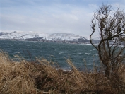 Largs from Cumbrae
