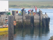 Fishermen collecting crabs from the pier at Post Askaig